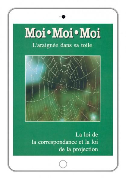 eBook - Moi moi moi, l'araignée dans sa toile