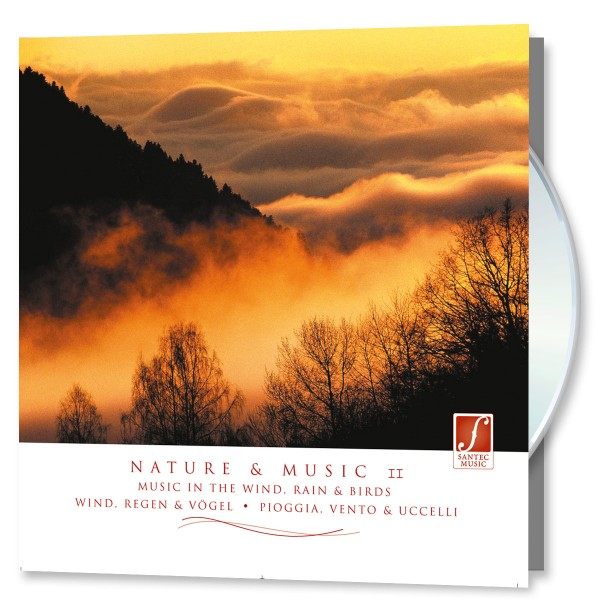 Nature & Musik II - Musik im Regen, Wind, Vögel